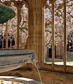 Monastère de Bebenhausen, jardins et cloître